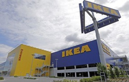 EU điều tra các thỏa thuận thuế tại Hà Lan của IKEA