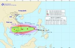 Áp thấp nhiệt đới đã mạnh lên thành cơn bão số 12