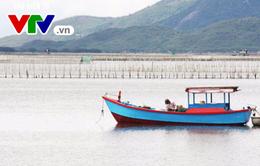 Khánh Hòa: Ngăn chặn nạn khai thác nghề cấm, vùng cấm trên đầm Nha Phu