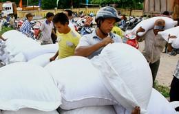 Cấp phát gần 18 tấn gạo Tết cho người nghèo Nghệ An