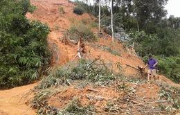 Hà Giang: Tích cực giúp người dân ổn định sau mưa lũ