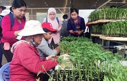 Lâm Đồng chi trên 106 tỷ đồng phát triển hạ tầng phục vụ sản xuất