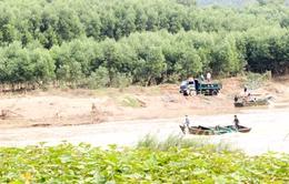 Tái diễn nạn khai thác cát trái phép tại Khánh Hòa