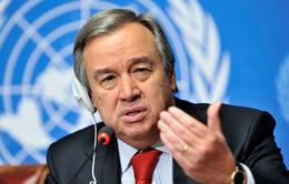Tổng Thư ký LHQ kêu gọi nỗ lực chấm dứt xung đột tại Yemen