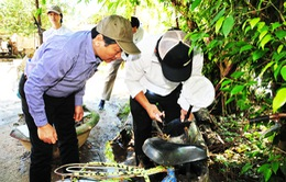 Khánh Hòa: Người dân chủ quan trong phòng chống sốt xuất huyết