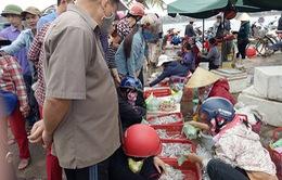 Quảng Bình: Tiêu thụ hải sản ở chợ Đồng Hới nhộn nhịp trở lại