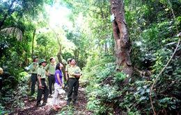 Công nhận Vườn Quốc gia Bái Tử Long là Vườn Di sản của ASEAN