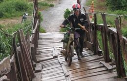 Hàng loạt cầu treo xuống cấp ở Bảo Lâm, Lâm Đồng