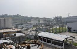 Đưa ra phương án xử lý Nhà máy sản xuất nhiên liệu sinh học Quảng Ngãi