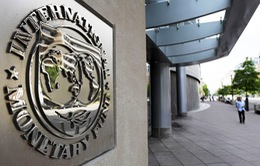 IMF nâng dự báo tăng trưởng kinh tế