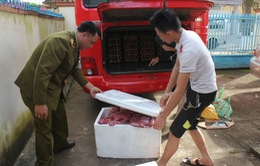 Bắt giữ xe ô tô chở gần 200kg thịt động vật không rõ nguồn gốc tại Đăk Lăk