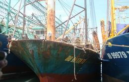 Công ty Nam Triệu khắc phục sự cố tàu vỏ thép cho ngư dân Bình Định