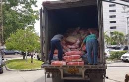 Thái Lan bắt giữ hơn 30 tấn thịt bò nhập lậu