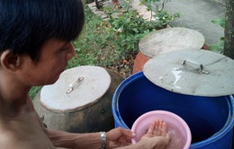 Nguy cơ bùng phát dịch sốt xuất huyết ở Cà Mau