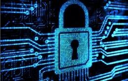 Giải pháp chống mã độc giúp ngăn chặn hiệu quả các nguy cơ an ninh