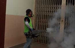 TP.Hồ Chí Minh: 103 người bị nhiễm vi rút Zika, trong đó có 13 thai phụ