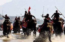 Tiếp cuộc tranh cãi: Nên chăng chấm dứt đua voi Tây Nguyên?