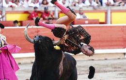 Người đấu bò bị bò tót húc phải rời sân đấu