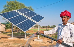 Ấn Độ: Quang năng sẽ thay thế nhiệt điện vào năm 2027