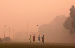 Chất lượng không khí ở thủ đô của Ấn Độ được cải thiện