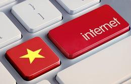 Những nhân vật có ảnh hưởng với sự phát triển Internet Việt Nam