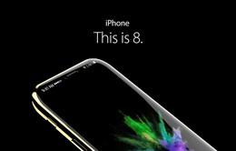 Tất tần tật những tin đồn sắp thành sự thật về iPhone 8