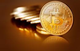 """Phát hiện hơn 600 ứng dụng """"đen"""" có thể lấy cắp Bitcoin"""