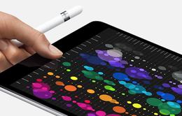 Sẽ có iPad tràn màn hình và dùng FaceID vào năm 2018?