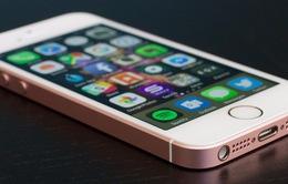 Không phải iPhone X, đây mới là chiếc smartphone đáng mua nhất của Apple