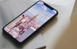 Hôm nay 8/12, iPhone X chính hãng chính thức lên kệ tại Việt Nam
