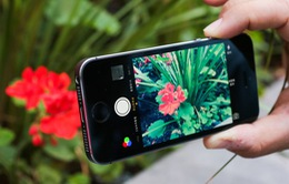 iPhone màn hình nhỏ đang chết dần: Steve Jobs đã sai!