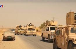 Iraq tuyên bố giải phóng hơn 90% vùng lãnh thổ từ tay IS