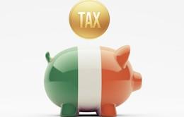 Chiêu thức lách thuế của các công ty công nghệ