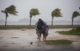 Bão Irma gây thiệt hại nặng nề tại Cuba