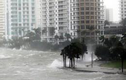 Siêu bão Irma đe dọa ngành du lịch của Florida