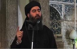 IS xác nhận cái chết của thủ lĩnh al-Baghdadi