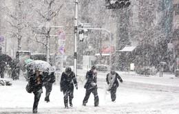 Nhật Bản: 3 người thiệt mạng trong ngày lạnh nhất kể từ đầu mùa Đông