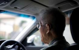 TNGT gây tử vong do tài xế cao tuổi tăng cao tại Nhật Bản