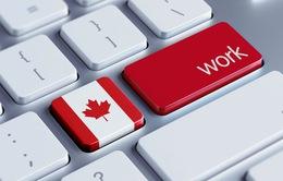 Canada hút lao động tay nghề cao khi Mỹ giới hạn nhập cư