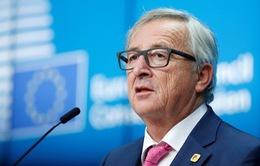 Lãnh đạo EU bi quan về khả năng Anh đáp ứng thời hạn Brexit
