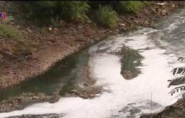 Thanh tra 520 cơ sở có nguy cơ gây ô nhiễm môi trường