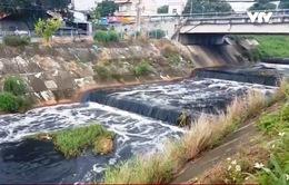 Cam kết xử lý ô nhiễm kênh Ba Bò