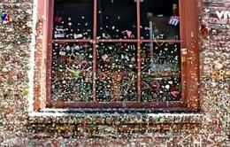 Độc đáo bức tường kẹo cao su ở Seattle