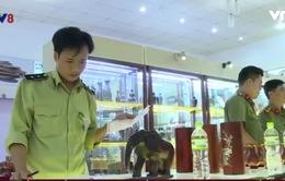 Khánh Hòa: Nhiều sai phạm tại các điểm kinh doanh phục vụ du khách