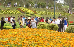 Nắng nóng, du khách đến Đà Lạt tăng mạnh