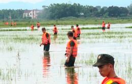 Khắc phục thiệt hại do mưa lớn tại Nghệ An