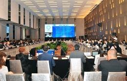 APEC thúc đẩy toàn cầu hóa và tự do hóa thương mại