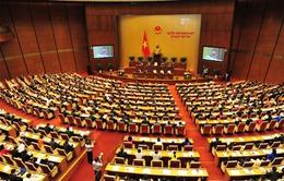 Cử tri đánh giá cao trách nhiệm giải trình trong chất vấn của các thành viên Chính phủ