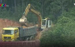 Khai thác đất trái phép trong hành lang an toàn đường bộ diễn ra rầm rộ