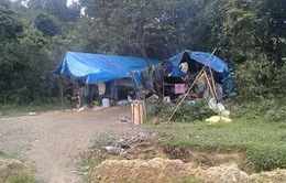 Làm rõ tình trạng khai thác khoáng sản ở Bồng Miêu, núi Hồng